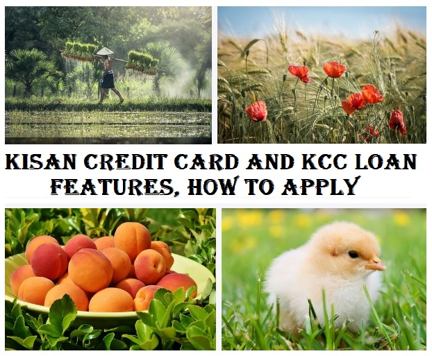 kisan credit card and KCC Loan