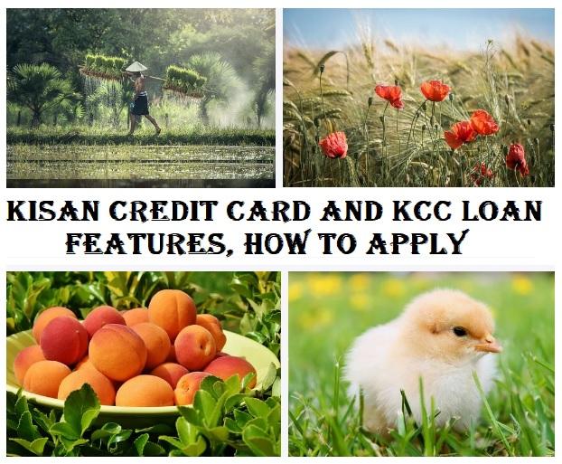 kisan credit card and KCC Loan